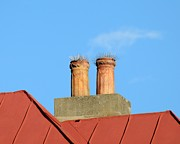 Rooftop Prints -  Prickly Perches Print by Al Powell Photography USA