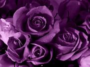 Purple Haze Print by Nancie DeMellia