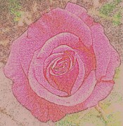 Decorating Photo Originals -  Rose by Tanya  Searcy