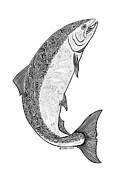 White River Drawings Prints -  Salmon II Print by Carol Lynne