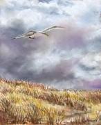 Seagull Flying Over Dunes Print by Jack Skinner