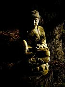 Siddharta Photo Metal Prints -  Seeing the light Metal Print by Sabine Stetson