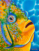 Paradise Art Tapestries - Textiles Prints -  Spotted Angelfish Print by Daniel Jean-Baptiste