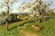Farm Fields Paintings -  Spring - one of a set of the four seasons  by Arthur Walker Redgate