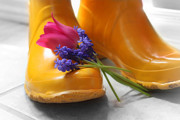 Cathy Beharriell Metal Prints -  Spring Boots Metal Print by Cathy  Beharriell