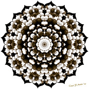 Stock Photo Digital Art Metal Prints -  Sunflower Shape Kaleidoscope  Metal Print by Carol F Austin
