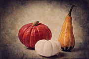 Culinary Mixed Media Metal Prints -  Three pumpkins Metal Print by Angela Doelling AD DESIGN Photo and PhotoArt