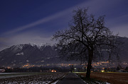 Long Street Prints -  Tree and snow-capped mountain Print by Mats Silvan