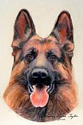 Police Pastels Framed Prints -  Tribute to the German Shepherd Framed Print by Linda Diane Taylor