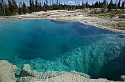 Wyoming Photo Posters -   Turquoise hot springs Yellowstone Poster by Garry Gay