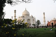 India Pastels Metal Prints -  View of Taj Mahal Metal Print by Joseph Mora
