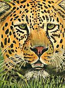Leopard Painting Prints -  Waiting For Prey Print by Arline Wagner