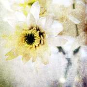 Yellow Mixed Media Prints -  White Flower Print by Linda Woods