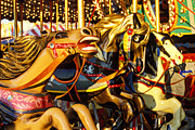 Amusement Park Framed Prints -  Wild carrousel horses  Framed Print by Garry Gay