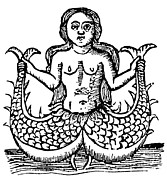 Woodcut Paintings - Mermaid, 1520 by Granger