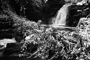 Flooding Prints -  Gleno or Glenoe Waterfall beauty spot county antrim northern ireland Print by Joe Fox