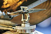 5 Litre Posters - 1927 Bentley 6.5 Litre Sports Tourer Hood Ornament Poster by Jill Reger