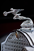 1931 Roadster Prints - 1931 Packard Deluxe Eight Roadster Hood Ornament Print by Jill Reger