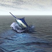 Game Fish Digital Art Posters - A Blue Marlin Bursts From The Ocean Poster by Corey Ford