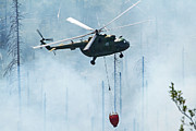 Bare Trees Prints - A Bulgarian Air Force Mi-17 Helicopter Print by Anton Balakchiev