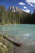 Taylor S. Kennedy - A Calm Pond With Mount...