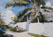 Young Framed Prints - A Garden in Nassau Framed Print by Winslow Homer