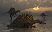 Roaming Digital Art Posters - A Group Of Spinosaurus Poster by Mark Stevenson