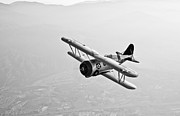 Warbird Photos - A Grumman F3f Biplane In Flight by Scott Germain