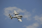 Warbird Photos - A Grumman Ov-1 Mohawk In Flight by Stocktrek Images