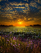 Horizons Framed Prints - A New Day Framed Print by Phil Koch
