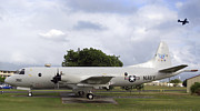 Military Base Framed Prints - A P-3 Orion Aircraft On Display Framed Print by Michael Wood