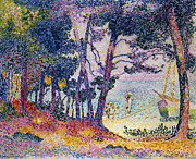 Tree Leaf On Water Framed Prints - A Pine Grove Framed Print by Henri-Edmond Cross