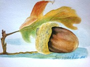 Acorn Paintings - A Raleigh Acorn by Terri Walker Pullen