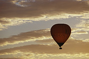 Yarra Valley Prints - A Soaring Hot Air Balloon Print by Jason Edwards