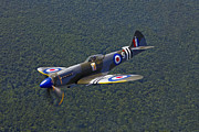 Spitfire Prints - A Supermarine Spitfire Mk-18 In Flight Print by Scott Germain