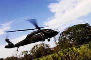 Landing Framed Prints - A U.s. Army Uh-60 Black Hawk Helicopter Framed Print by Stocktrek Images