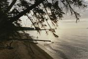 National Lakeshore Prints - A View Of The Shoreline In The Apostle Print by Raymond Gehman