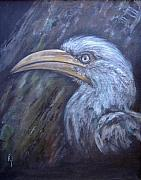 Hornbill Painting Framed Prints - A Watchful Eye Framed Print by Rita Palm