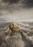 Missing Child Art - Abandoned antique baby carriage in field by Sandra Cunningham