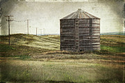Saskatchewan Posters - Abandoned wood grain storage bin in Saskatchewan Poster by Sandra Cunningham