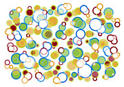 Color Mixed Media Prints - Abstract Circles Print by Frank Tschakert