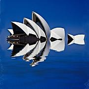 Abstract Of Sydney Opera House Print by Sheila Smart