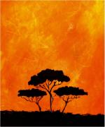 Silhouette Prints Mixed Media Prints - Acacia Trees Print by Mimo Krouzian