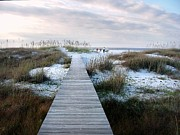 Panama City Beach Prints - Across the Dunes Print by Julie Dant