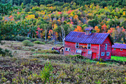 Fall Scenes Photos - Adirondack Charm  by Emily Stauring
