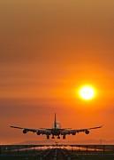 Aeroplane Landing At Sunset Print by David Nunuk