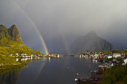 Lofoten Islands Photos - After the rain in Reine by Heiko Koehrer-Wagner