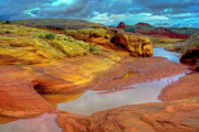 Valley Of Fire Prints - After The Rain Print by Stephen Campbell