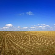 Plough Photos - Agricultural landscape by Bernard Jaubert