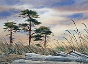 Seacoast Prints - Allure of the Coast Print by James Williamson